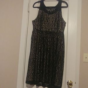 Lace and Leopard Dress